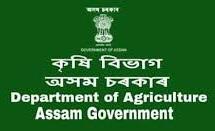 Assam Agriculture